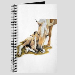 Palomino, Mare, buckskin, foa Journal
