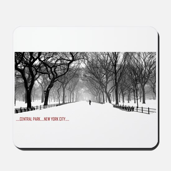Central Park, NYC Mousepad