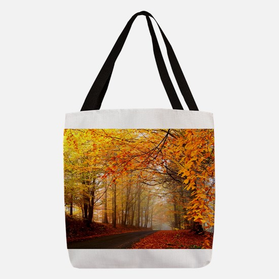 Road At Autumn Polyester Tote Bag