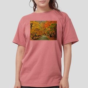 Park At Autumn T-Shirt