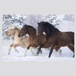Horse Area Rugs Cafepress