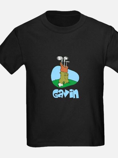 Gavin T