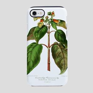 Kohleria warszewiczii iPhone 8/7 Tough Case