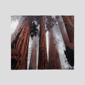 Morning Fog in Redwood Forest Throw Blanket