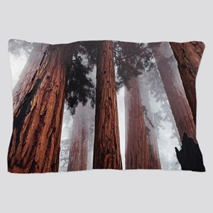 Morning Fog in Redwood Forest Pillow Case