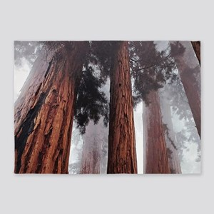 Morning Fog in Redwood Forest 5'x7'Area Rug
