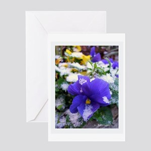 Blue Pansy in Snow Framed Greeting Card