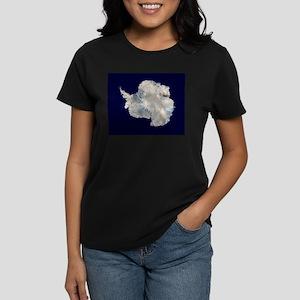 Antartica by NASA T-Shirt