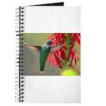 hummingbird Journal