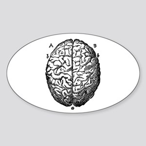 brain Oval Sticker