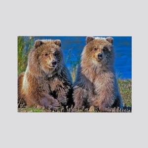 Grizzly twin Cubs Magnets