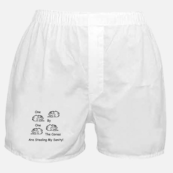Cavies stealing Sanity, Guinea Pig Boxer Shorts