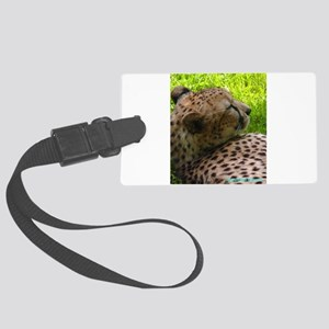 Brand New 2018 - Big Cat Beauty Large Luggage Tag