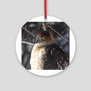 Broad-winged Hawk Round Ornament