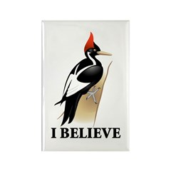Ivory-billed: I Believe Rectangle Magnet