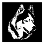 Siberian Husky Malamute Sled Dog Square Car Magnet