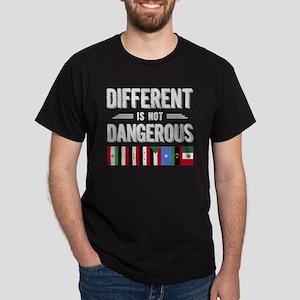 Different Is Not Dangerous T Shirt, Flag T T-Shirt