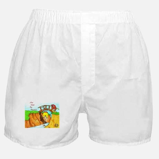 Golf-Hanging From Bridge Boxer Shorts