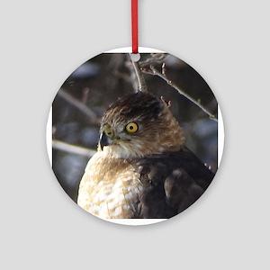 Broad winged Hawk Round Ornament