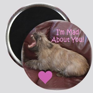 """""""Mad About You"""" Cairn Terrier Valentine Magnet"""