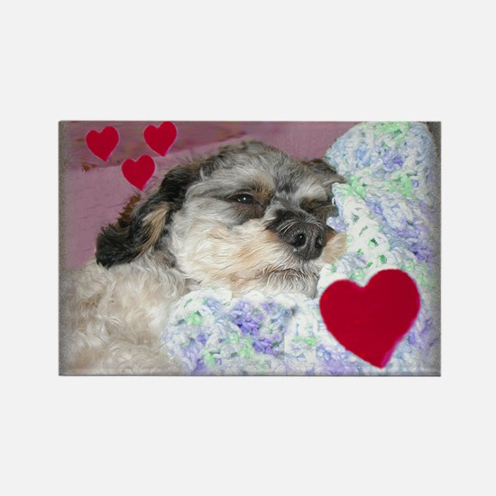 Snuggle-Pup Valentine Rectangle Magnet