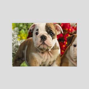Cute English Bulldog Puppy 4' x 6' Rug