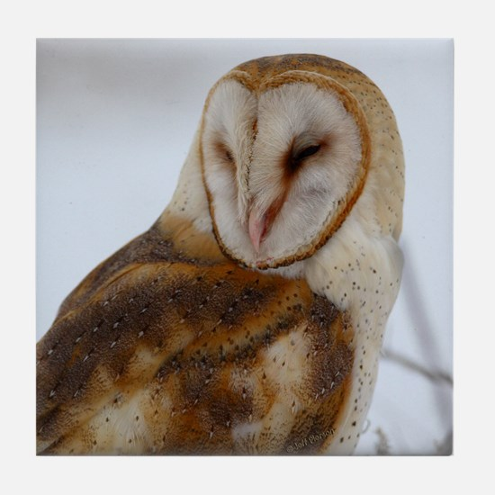 Night Owl Tile Coaster
