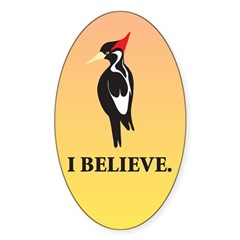 Simple Ivory-billed: I Believe Oval Decal