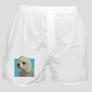 Bolognese dog Boxer Shorts