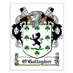 O'Gallagher Family Crest Small Poster