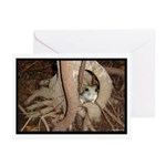 Abby's Tree Greeting Cards (Pk of 20)