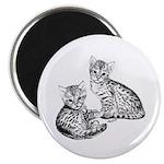 Savannah kittens Magnet