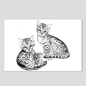 Savannah kittens Postcards (Package of 8)