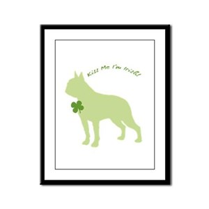 Boston Terrier... Kiss Me I'm Irish! Framed Panel