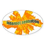 Internet Sensation Oval Sticker