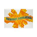 Internet Sensation Rectangle Magnet (10 pack)
