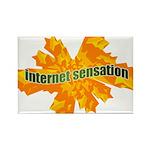 Internet Sensation Rectangle Magnet