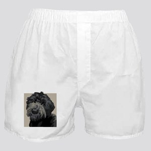 Black Russian Terrier (Front only) Boxer Shorts