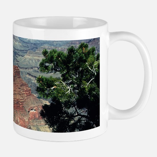 Grand Canyon Red Rock Mug