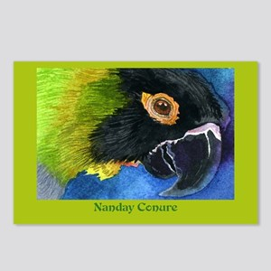NANDAY CONURE Postcards (Package of 8)