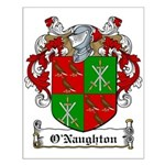 O'Naughton Family Crest Small Poster
