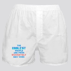 Coolest: Roosevelt, NY Boxer Shorts