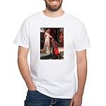 Accolade / Cocker Spaniel White T-Shirt