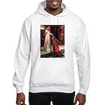 Accolade / Cocker Spaniel Hooded Sweatshirt