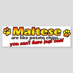 Potato Chips Maltese Bumper Sticker