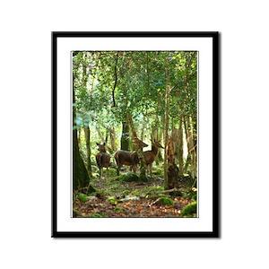 Red Deer Framed Panel Print