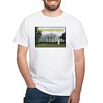 Political Stupidity White T-Shirt