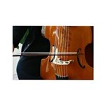 Viols in Our Schools Viola da Gamba Magnets