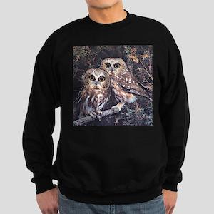 Owls164 Sweatshirt