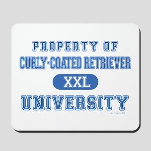 C.C.R. University Mousepad